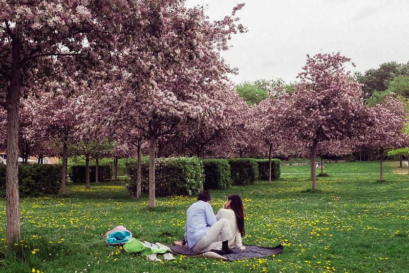 dwoje ludzi na pikniku majówkowym